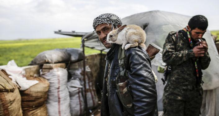Kurdyjski powstaniec w okolicy miasta Kobane w Syrii