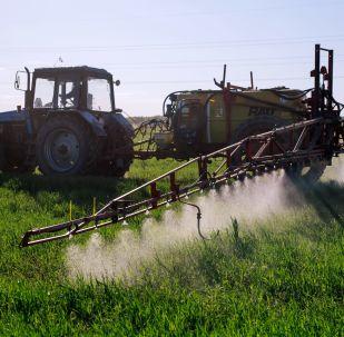 Ciągnik podczas nawożenia roślin ozimych