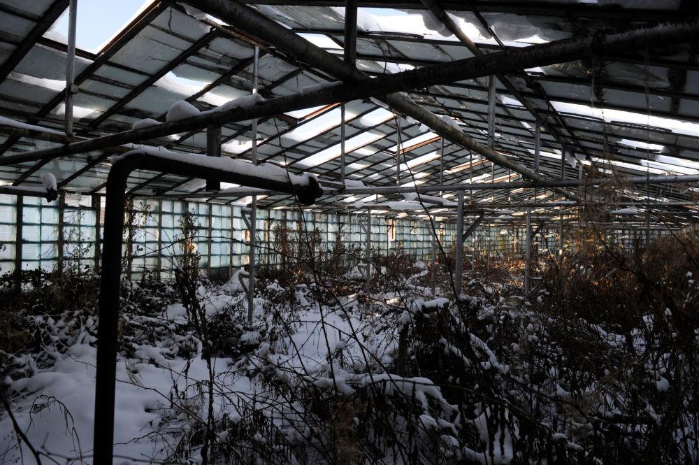 Skrunda-1 - tajne radzieckie miasto widmo na Łotwie, w odległości 70 kilometrów od zachodniego wybrzeża Morza Bałtyckiego. Rosyjscy żołnierze, opuszczając teren w 1998 roku, pozostawili tu 60 budynków: w tym bloki mieszkalne, klub oficerski i koszary.