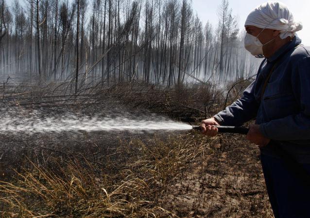 Walka z pożarami lasów