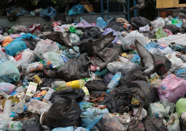 Niewywiezione śmieci we Lwowie