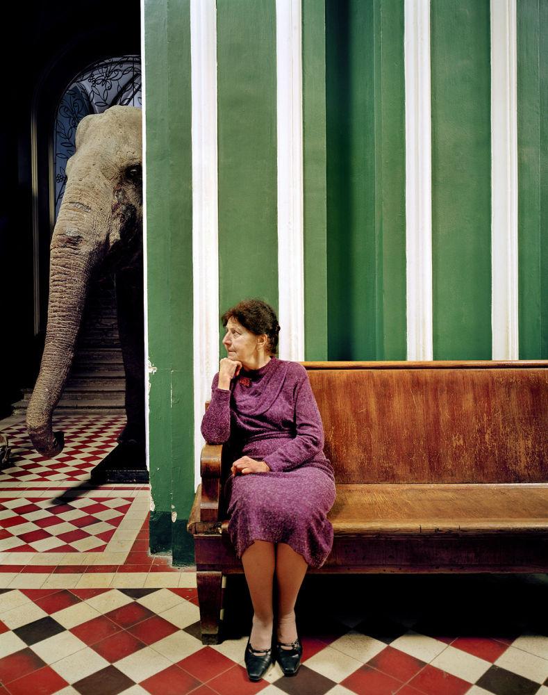 Zdjęcie Elephant I (Słoń I) niemieckiego fotografa Franka Herforta z cyklu Russian Fairy Tales (Rosyjskie bajki).