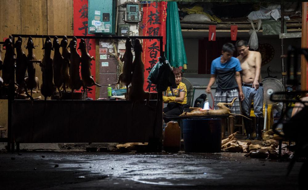 Dostawcy mięsa psów w chińskiej prowincji Guangxi