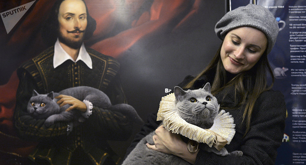 Kot brytyjski pasażerem Pociągu Szekspirowskiego w Moskwie
