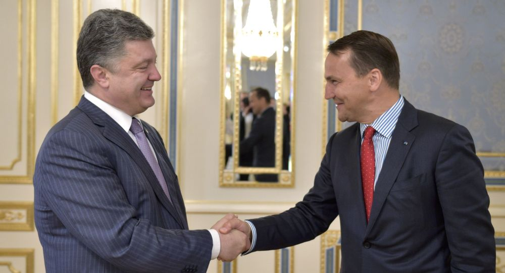 Radosław Sikorski i Petro Poroszenko