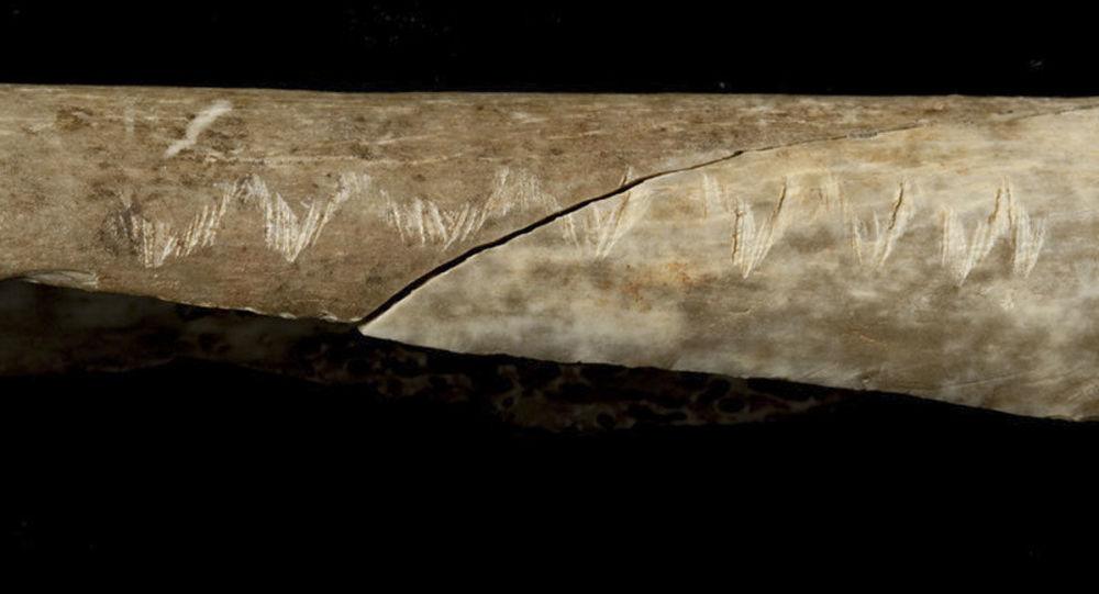 Kość człowieka pierwotnego z rysami rytualnymi
