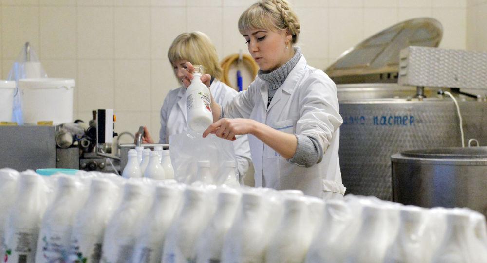 Zakład, w którym rozlewane jest kozie mleko w gospodarstwie Dak pod Mińskiem
