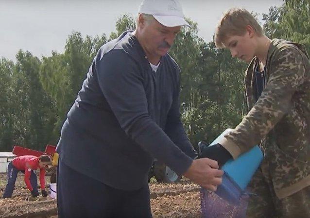 Prezydent Białorusi Aleksandr Łukaszenka z synem
