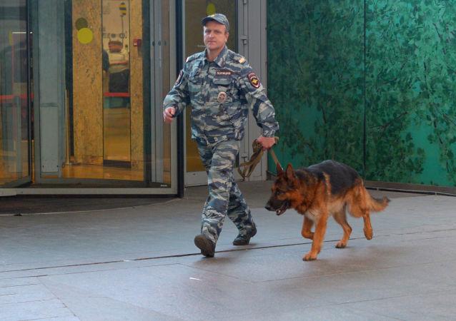 Kynolog z psem w centrum handlowym AFIMALL City w Moskwie