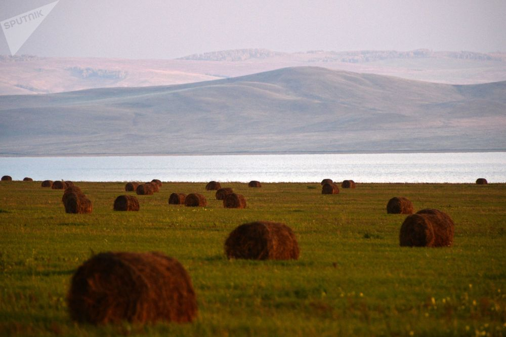Stogi siana na polach w Republice Chakasja