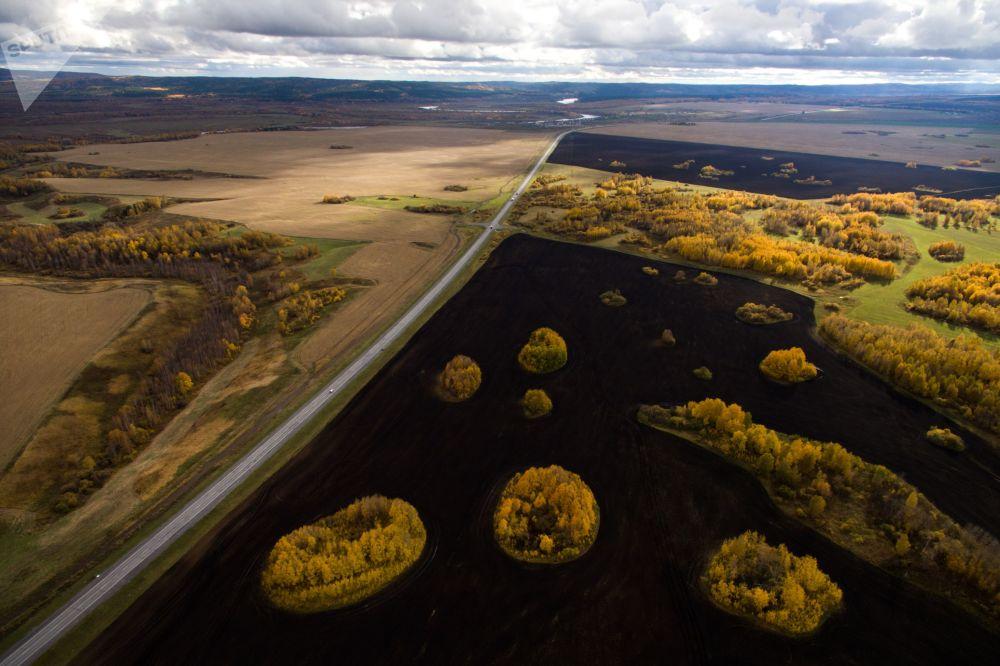 Federalna droga R255 Sybir i pola wzdłuż drogi w okolicy miasta Kemerowo