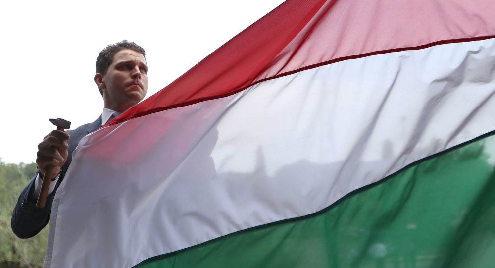 Mężczyzna na tle flagi Węgier