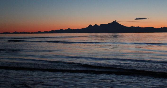 Szczątki nieznanej morskiej istoty znalazł lokalny mieszkaniec Bjorn Dihle na oddalonej plaży w zatoce Bernersa na Alasce