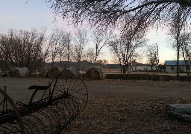 Farma w Arizonie