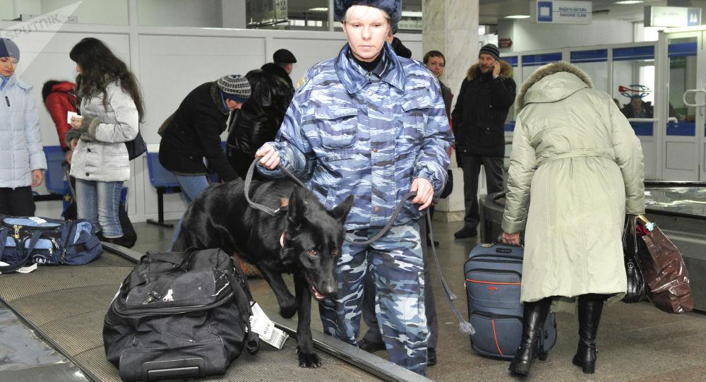 Służba celna na lotnisku w Domodiedowo
