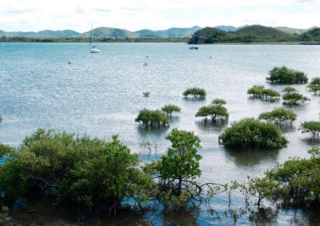 Linia brzegowa komuny Kumak w Nowej Kaledonii, Francja