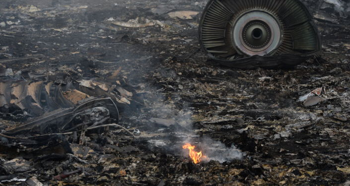 Katastrofa malezyjskiego boeinga w obwodzie donieckim