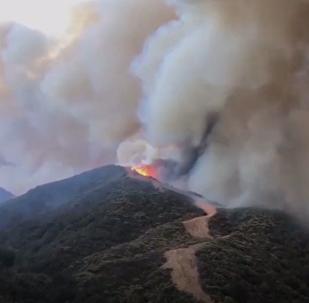 Potężny pożar buszuje w Kalifornii
