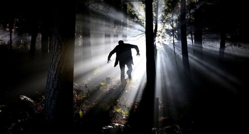 Wampir w lesie
