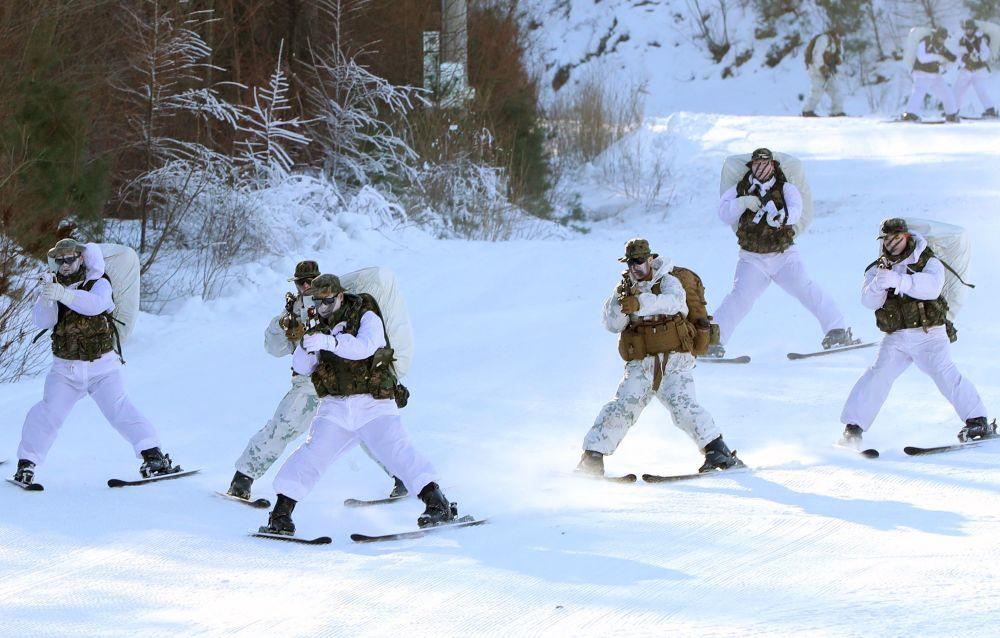 Żołnierze piechoty morskiej ćwiczą walkę wręcz, strzelanie do celów, uczestniczą w biegach narciarskich oraz zwiadach treningowych w lesie.