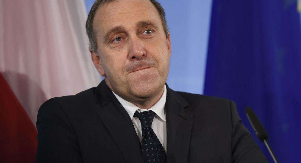 Grzegorz Schetyna, polski minister spraw zagranicznych