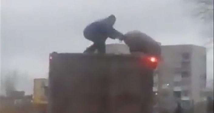 Klatka z nagrania walki człowieka i świni