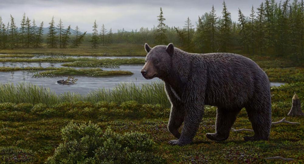 W Kanadzie znaleziono najstarszą ofiarę próchnicy
