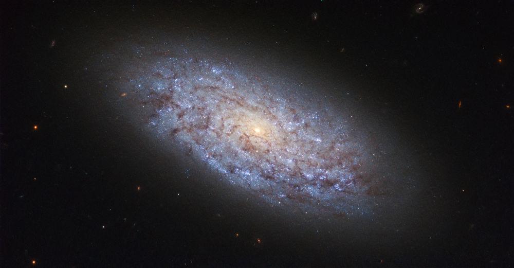 Galaktyka NGC 5949 w gwiazdozbiorze Smoka łamie prawa występowania ciemnej materii.