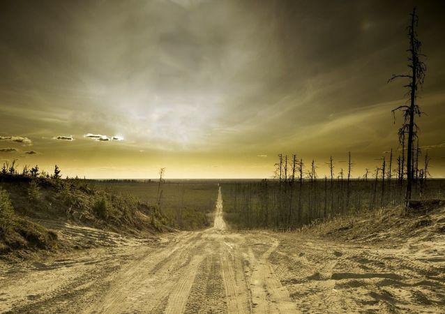 Krajobraz po wojnie