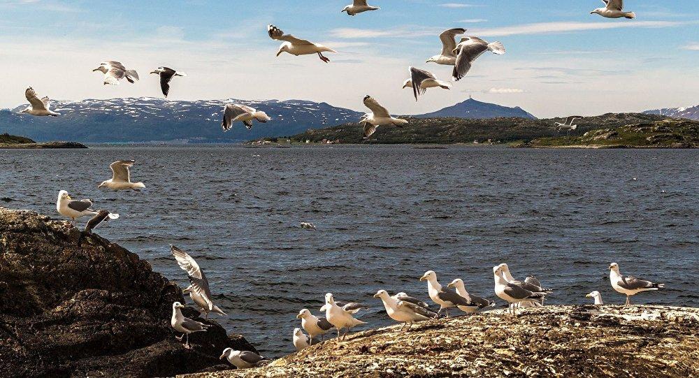Północna Norwegia