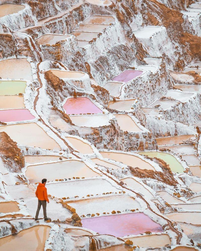 Przyroda Peru - fotografia dla projektu Jak daleko od domu