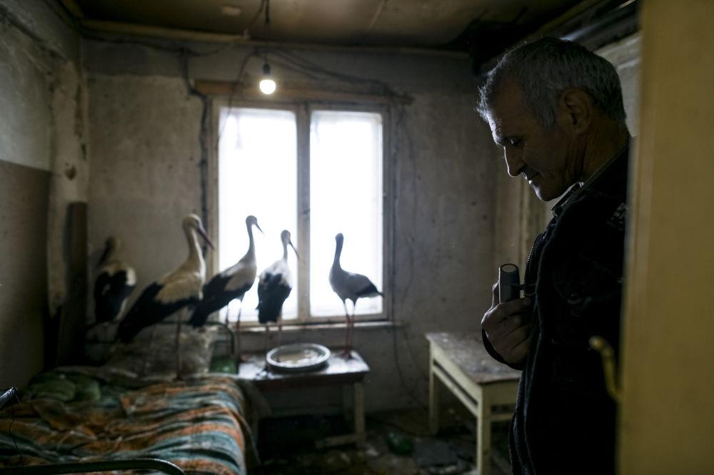 Safet Halil, który uratował pięć bocianów przed zimnem w miejscowości Zarica, Bułgaria