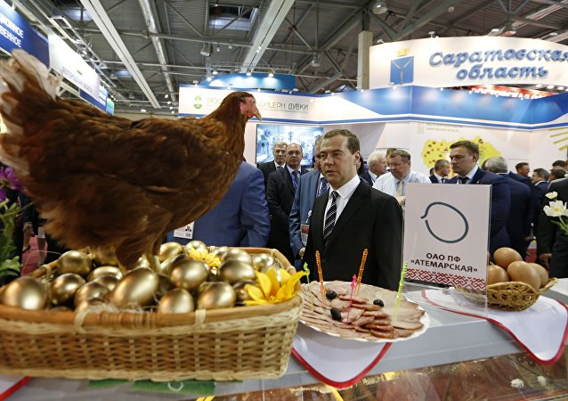 Dmitrij Miedwiediew na targach rolniczych