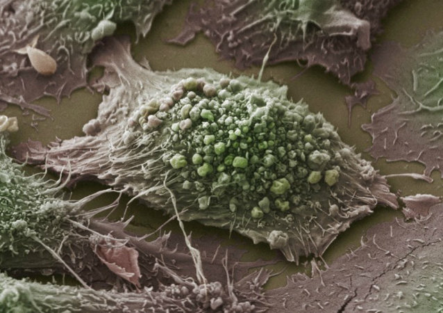 Walka z rakiem