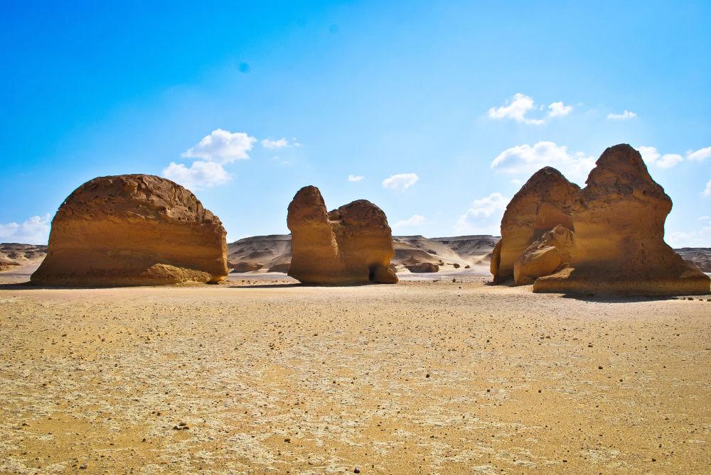 Wadi al-Hitan -  sucha dolina na Pustyni Zachodniej w północno-zachodnim Egipcie