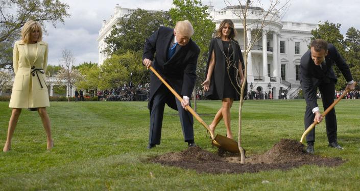 Prezydent USA Donald Trump z żoną Melanią i prezydent Francji Emmanuel Macron z żoną Brigitte sadzą drzewo przed Białym Domem