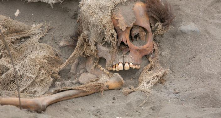 Wykopaliska archeologiczne w miejscu masowego pochówku wykonanego przed przedstawicieli kultury Chima w Peru