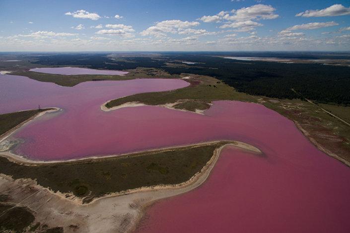 Malinowe jezioro w Kraju Ałtajskim