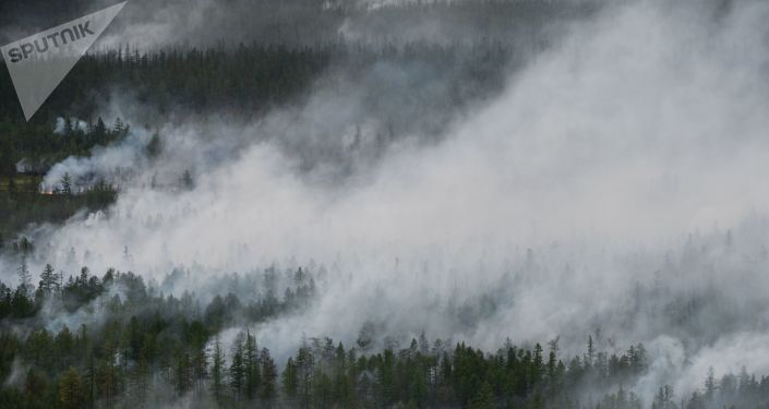 Pożary lasów w Jakucji
