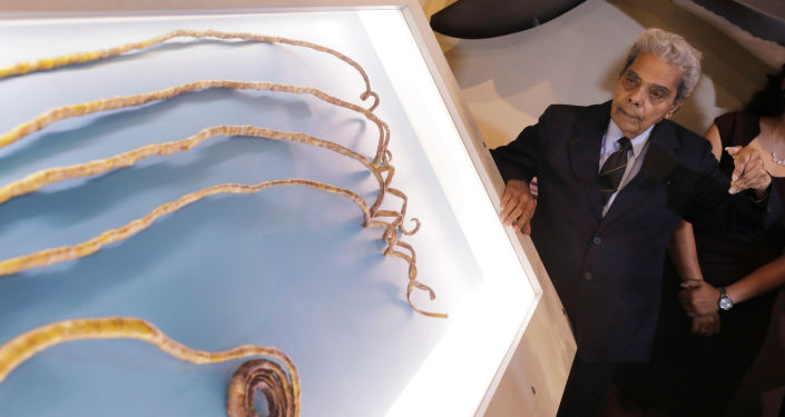 Posiadacz najdłuższych paznokci na świecie, Hindus Shridhar Chillal