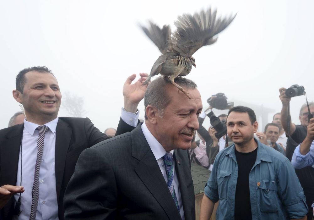 Dupelt na głowie prezydenta Turcji Tayyipa Erdoğana
