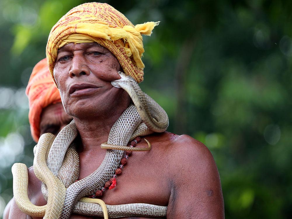 Zaklinacz węży na festiwalu Maa Mansa Puja w Indiach