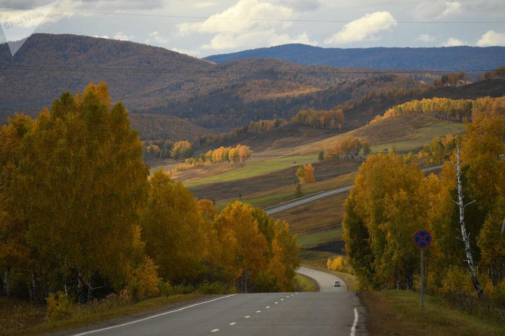 Rejon szarypowski – rejon administracyjny i komunalny Kraju Krasnojarskiego