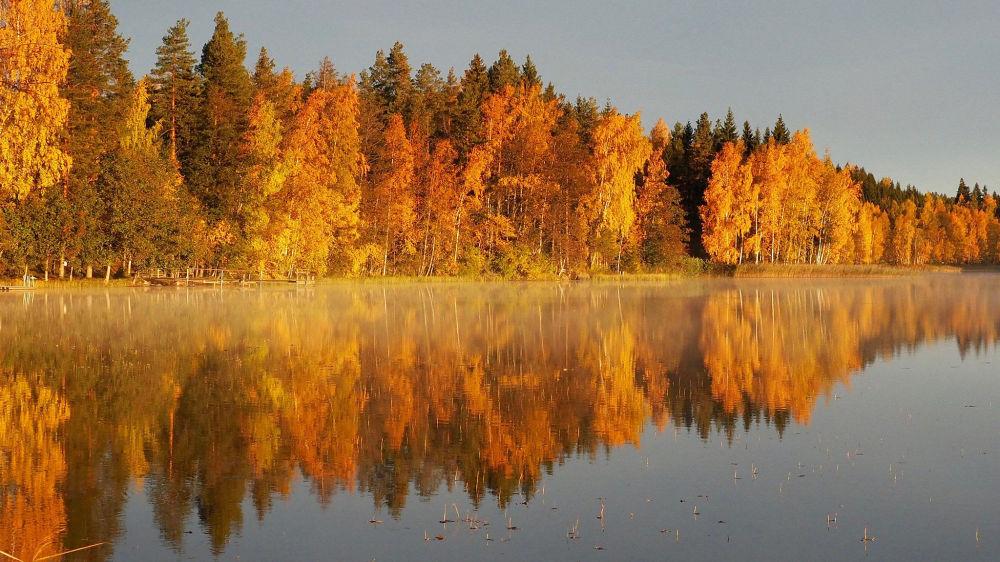 Jesienny pejzaż w Finlandii