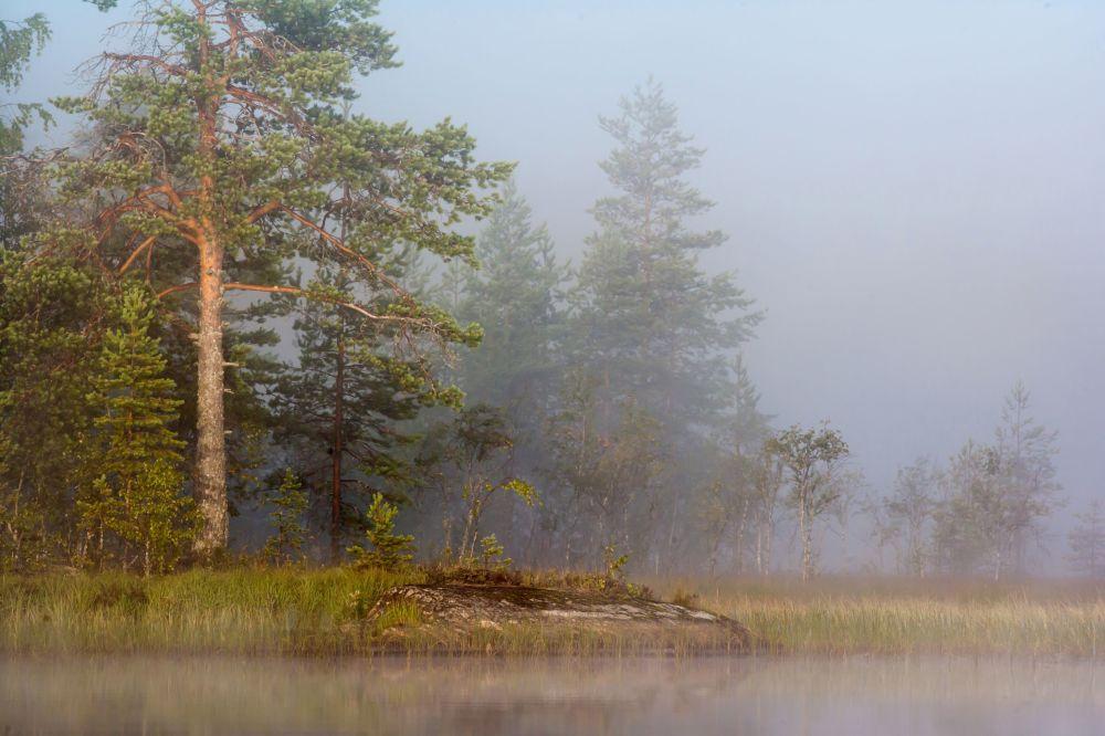Jezioro w mgle w Karelii