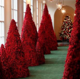 Drzewa z czerwonych jagód w Białym Domu w Waszyngtonie