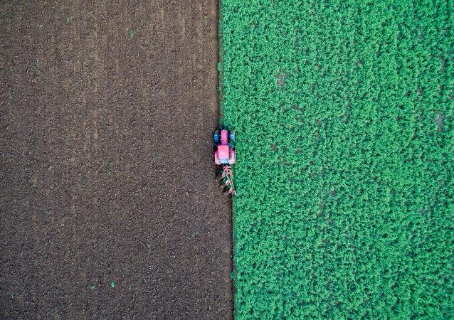 Rolnik w traktorze na polu w Niemczech