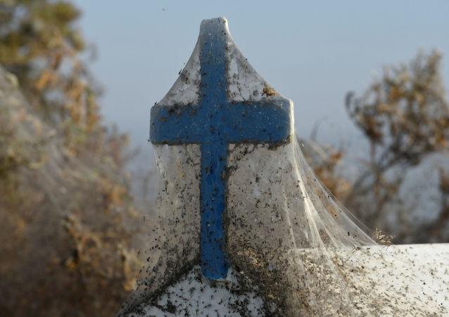 Krzyż w pajęczynie, Grecja