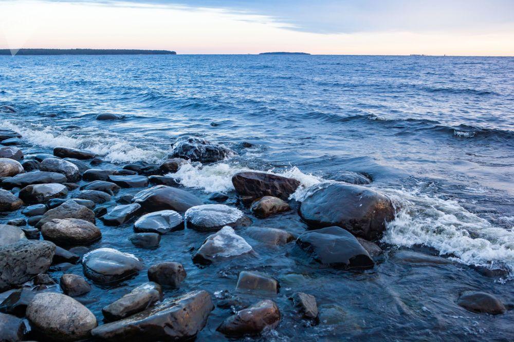 Brzeg jeziora Onega w Republice Karelii