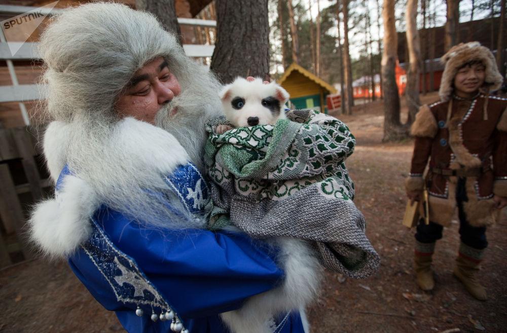 Jamał Iri z Salecharda niesie szczeniaka w prezencie dla Dziadka Mroza w czasie świętowania Urodzin Świętego Mikołaja w Wielkim Utiugu